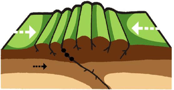 Formación de una Montaña