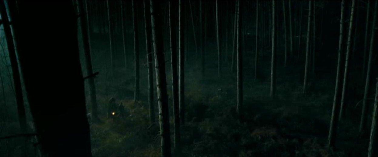 bosque prohibido harry potter