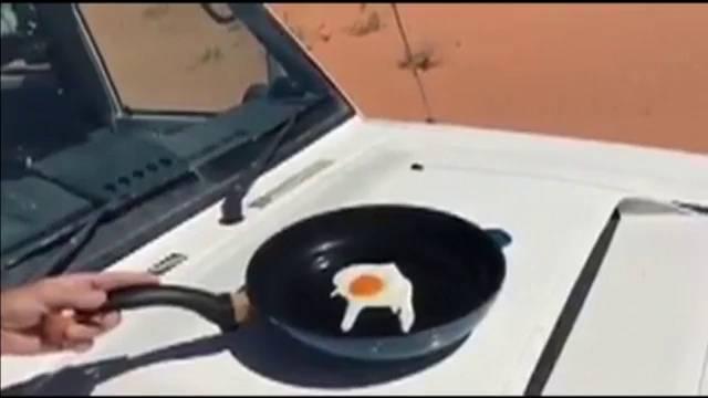huevo-capo